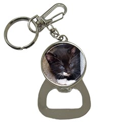 Kitty In A Corner Bottle Opener Key Chains by trendistuff