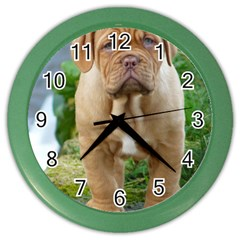 Cute Wrinkly Puppy Color Wall Clocks by trendistuff