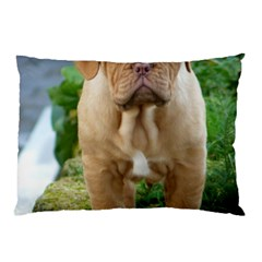 Cute Wrinkly Puppy Pillow Cases (two Sides) by trendistuff