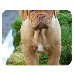 Cute Wrinkly Puppy Double Sided Flano Blanket (medium)  by trendistuff
