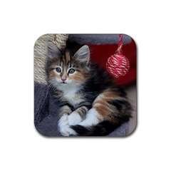 Comfy Kitty Rubber Square Coaster (4 Pack)  by trendistuff