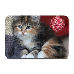 COMFY KITTY Plate Mats by trendistuff