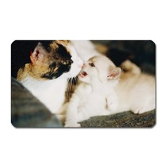 Calico Cat And White Kitty Magnet (rectangular) by trendistuff