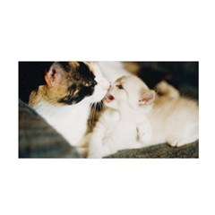 Calico Cat And White Kitty Satin Wrap by trendistuff