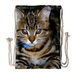 Blue Eyed Kitty Drawstring Bag (large) by trendistuff