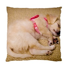 Adorable Sleeping Puppy Standard Cushion Cases (two Sides)  by trendistuff
