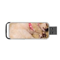 Adorable Sleeping Puppy Portable Usb Flash (two Sides) by trendistuff