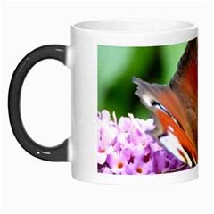 Peacock Butterfly Morph Mugs by trendistuff