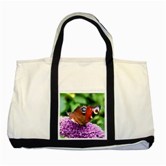 Peacock Butterfly Two Tone Tote Bag  by trendistuff