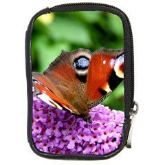 Peacock Butterfly Compact Camera Cases by trendistuff