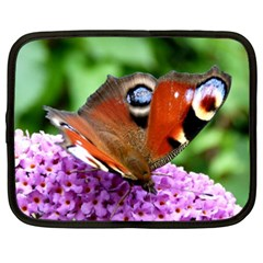 Peacock Butterfly Netbook Case (xl)  by trendistuff