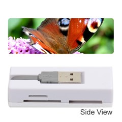 Peacock Butterfly Memory Card Reader (stick)  by trendistuff