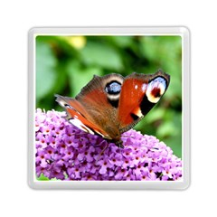 Peacock Butterfly Memory Card Reader (square)  by trendistuff