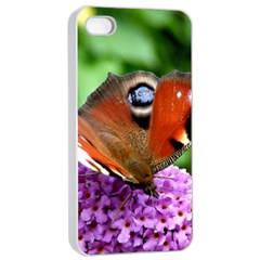 Peacock Butterfly Apple Iphone 4/4s Seamless Case (white) by trendistuff