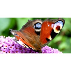 Peacock Butterfly You Are Invited 3d Greeting Card (8x4)