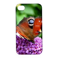 Peacock Butterfly Apple Iphone 4/4s Hardshell Case With Stand by trendistuff