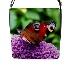 Peacock Butterfly Flap Messenger Bag (l)  by trendistuff