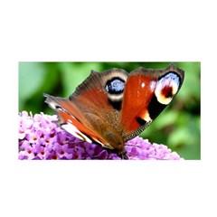 Peacock Butterfly Satin Wrap by trendistuff