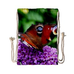 Peacock Butterfly Drawstring Bag (small) by trendistuff