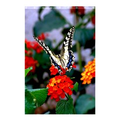 Butterfly Flowers 1 Shower Curtain 48  X 72  (small)
