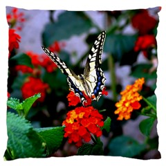 Butterfly Flowers 1 Large Cushion Cases (two Sides)  by trendistuff