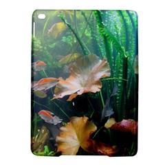Marine Life Ipad Air 2 Hardshell Cases by trendistuff