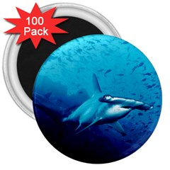 Hammerhead 3  Magnets (100 Pack) by trendistuff
