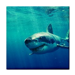 GREAT WHITE SHARK 1 Tile Coasters by trendistuff