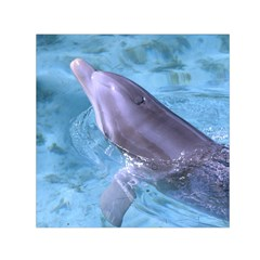 Dolphin 2 Small Satin Scarf (square)  by trendistuff