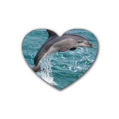 Dolphin Heart Coaster (4 Pack)  by trendistuff