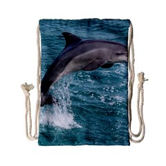 Dolphin Drawstring Bag (small) by trendistuff