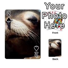 Cute Sea Lion Playing Cards 54 Designs