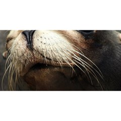 Cute Sea Lion You Are Invited 3d Greeting Card (8x4)