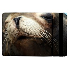 Cute Sea Lion Ipad Air Flip by trendistuff