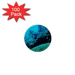 Coral Reefs 2 1  Mini Magnets (100 Pack)  by trendistuff