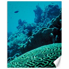 Coral Reefs 2 Canvas 16  X 20   by trendistuff