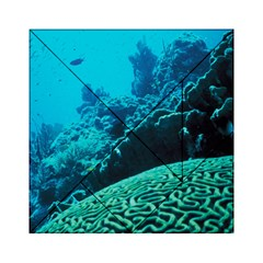 CORAL REEFS 2 Acrylic Tangram Puzzle (6  x 6 ) by trendistuff