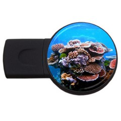 CORAL OUTCROP 2 USB Flash Drive Round (1 GB)  by trendistuff
