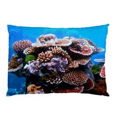Coral Outcrop 2 Pillow Cases (two Sides) by trendistuff