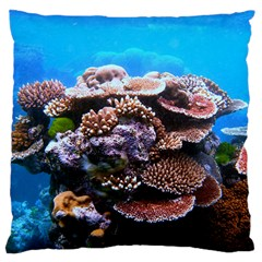 Coral Outcrop 2 Large Cushion Cases (one Side)  by trendistuff