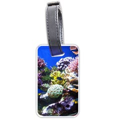 Coral Outcrop 1 Luggage Tags (two Sides) by trendistuff