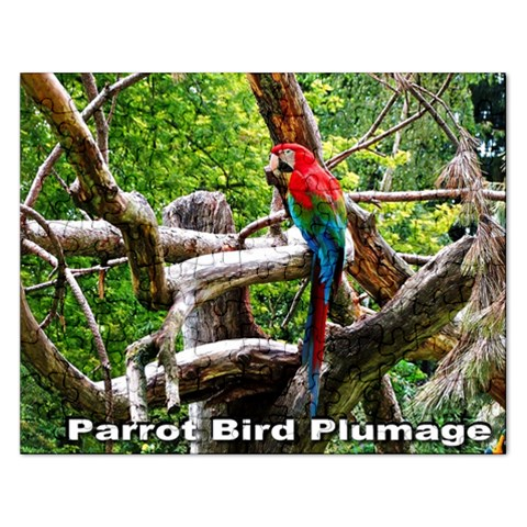 Parrot Bird Plumage  Puzzle By Pamela Sue Goforth   Jigsaw Puzzle (rectangular)   L9w79uiks3ra   Www Artscow Com Front