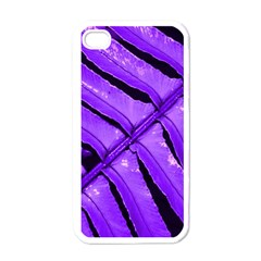 Purple Fern Apple Iphone 4 Case (white) by timelessartoncanvas
