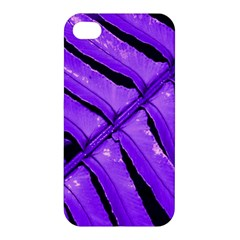 Purple Fern Apple Iphone 4/4s Hardshell Case by timelessartoncanvas