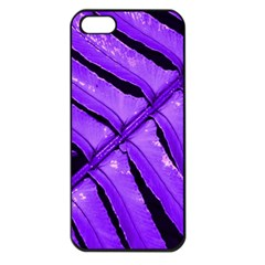 Purple Fern Apple Iphone 5 Seamless Case (black) by timelessartoncanvas