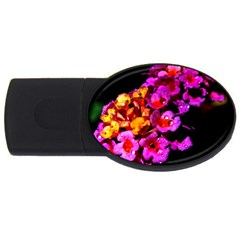 Lantanas Usb Flash Drive Oval (2 Gb)  by timelessartoncanvas