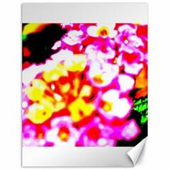 Dsc 01036 Canvas 18  X 24