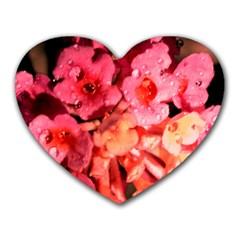 Dsc 0117666565 Heart Mousepads by timelessartoncanvas