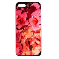 Dsc 0117666565 Apple Iphone 5 Seamless Case (black) by timelessartoncanvas