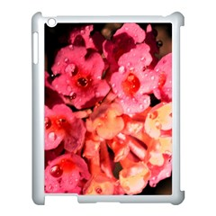 Dsc 0117666565 Apple Ipad 3/4 Case (white) by timelessartoncanvas